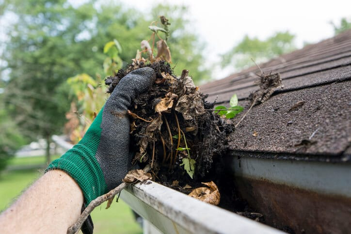 Gutter Cleaning Services (Everything You Need To Know)